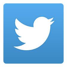 Pagina Ufficiale Twitter Villa Signorini