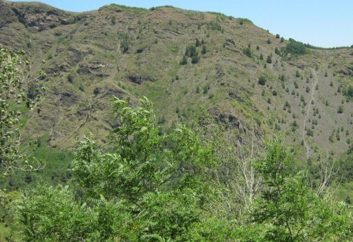 Un'immagine del Parco Nazionale del Vesuvio!!!